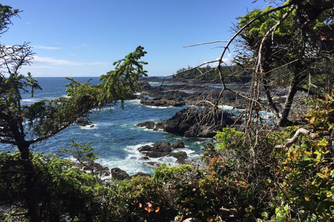 B.C. road trips: Vancouver Island